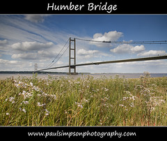 Humber Bridge (Paul Simpson Photography) Tags: uk bridge england sky flower water clouds river europe estuary wildflowers viewpoint humberbridge roadway eastyorkshire roadbridge humberside northlincolnshire riverhumber singlespanbridge northlincs foregroundinterest southhumberside paulsimpsonphotography