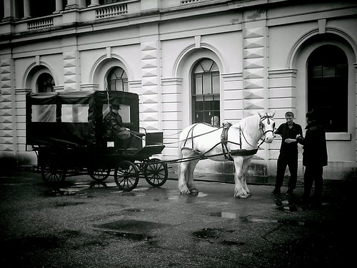 Horse And Carraige, Osborne House