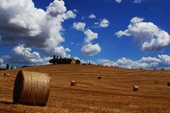 Val d'Orcia 2010 (Vale Lyn) Tags: italy clouds cornfield italia nuvole country campagna tuscany siena pienza toscana valdorcia grano presse campodigrano collinesenesi
