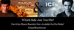 The Fire & Ice Collection (smarteepantz) Tags: eclipse twilight jacob edward swarovski newmoon charmbracelet crystalheart fireandice bellasbracelet wolfcharm fireicebracelets