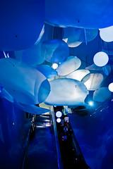 Into the Sea (Terry.L) Tags: world china blue light sea people color colour architecture germany dark lumix shanghai expo interior deep wave panasonic pavilion 2010 gf1 worldexpo2010 lumixgvario1445mmf3556asphmegaois