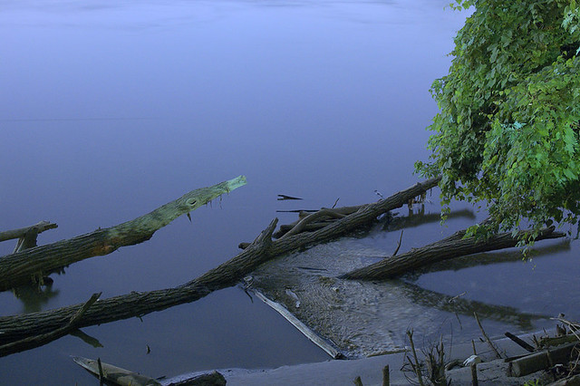 Night view of the Missouri River, in Saint Charles, Missouri, USA - tree trunks in river