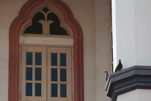 Pigeons outside Masjid Sultan Mosque, Singapore