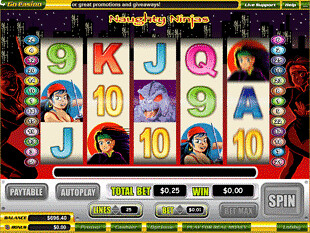 Naughty Ninjas slot game online review