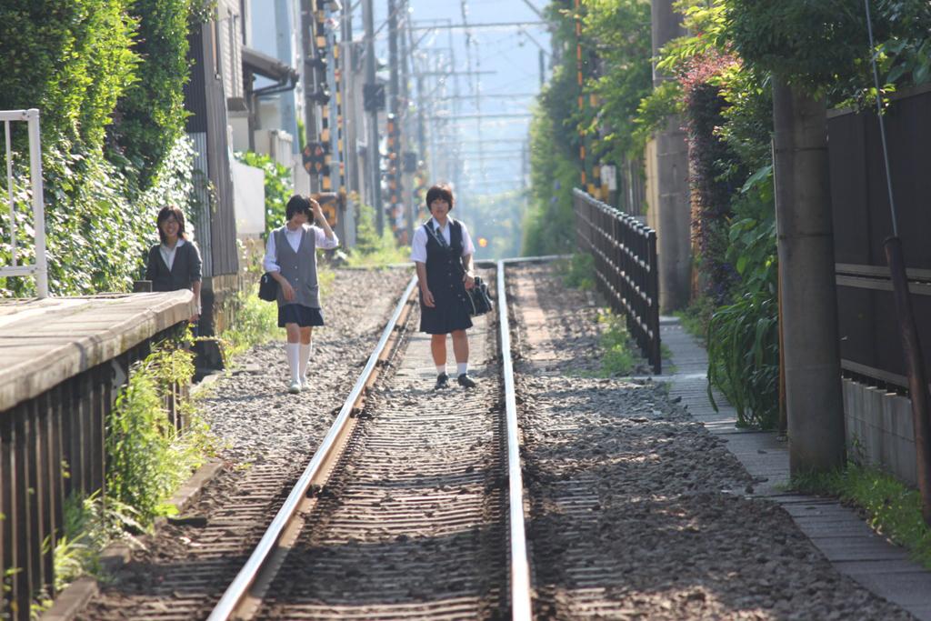 Hydrangeas - Exploring Hase, Kamakura part2 (17)
