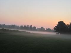 sunrise over a dewy field