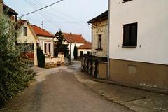 Bukovče (Weingarten) Tags: srbija serbie serbien negotin bukovče