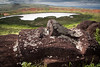 20091225 Isla de Pascua 142 (blogmulo) Tags: travel canon easter island ar pascua viajes moai isla 2009 quarry cantera nui rapa canon450d blogmulo
