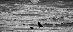 surfing (solar_productions) Tags: white storm black golf surf waves wave zeeland surfing vlissingen flushing surfen badstrand springflut springvloed
