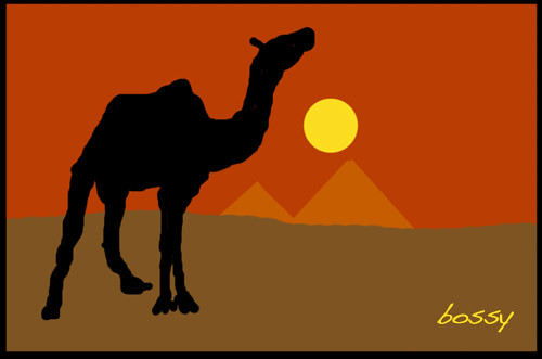 camel-graphic2