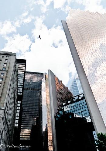 City Series - Toronto