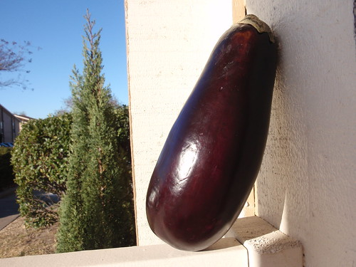 Eggplant in the Sun