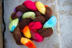choco rainbow on SF merino fiber