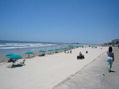 Galveston Island Texas - Beach & Seawall (paulbmichaels) Tags: sea galveston beach wall island texas tx seawall umbrellas