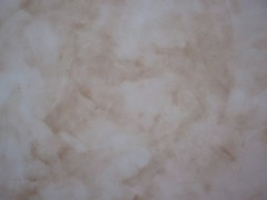 Close up plaster (Eco Aesthetic) Tags: plaster clay american