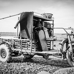 oyster vehicle at rest thumbnail