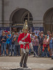 Household Cavalry (Philip Pound Photography) Tags: changingtheguard householdcavalry britisharmy britishsoldiers queenshouseholdcavalry horseguardsparade london soldiers uniform pomp ceremony pageantry