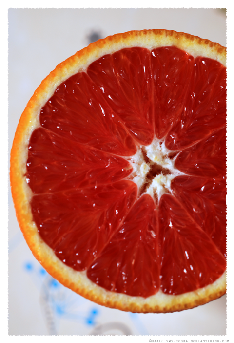 red navel orange© by Haalo
