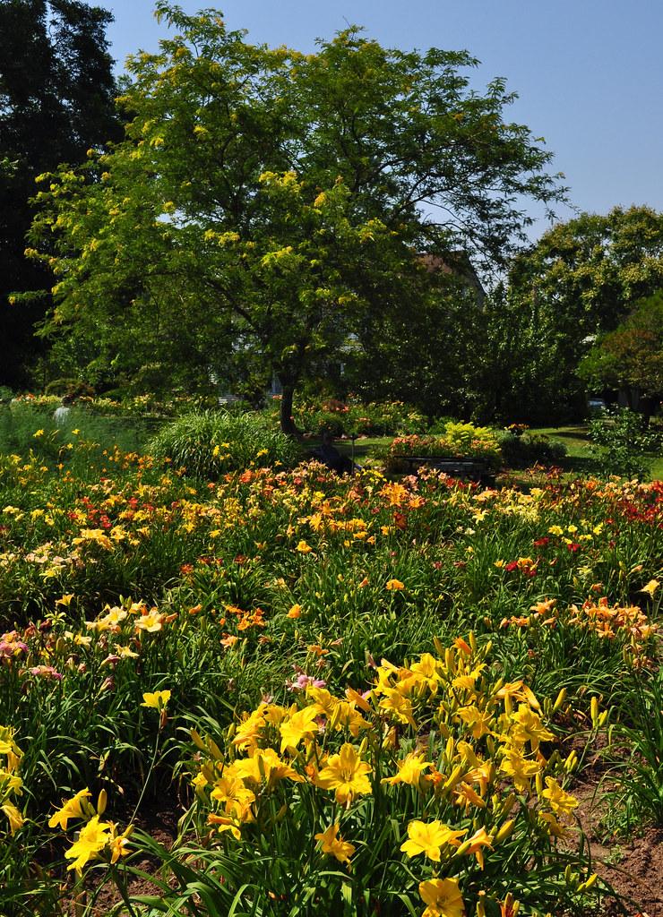 Sterrett Gardens (11)