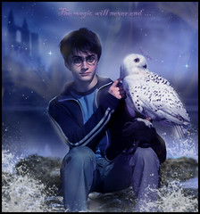 Harry Potter - The magic will never end (TheLean) Tags: never stone photoshop ronald james magic harry potter gina lord morte will da end wesley pedra camara snape jk nevill hermione granger voldemort the rony dumbledore severo alvo reliquias filosofal prisioneiro secreta