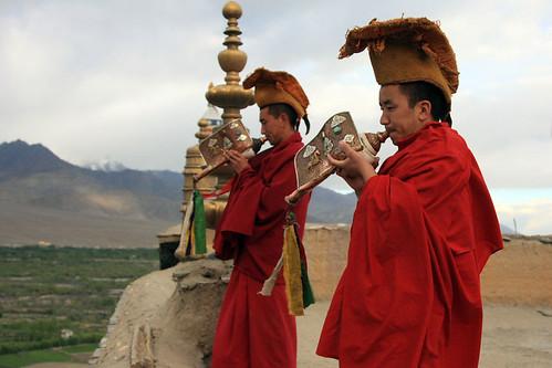 W Thikse modlą się mnisi