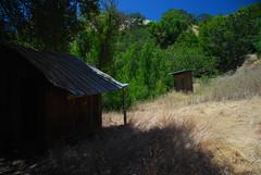Willson Camp