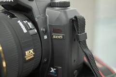 SDIM01612