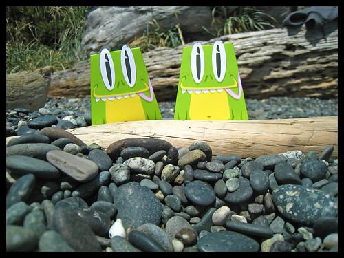 ptsf vinny 10 -Matt Hawkins Frog
