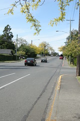 The great disappearing bike lane on Foul Bay Rd.