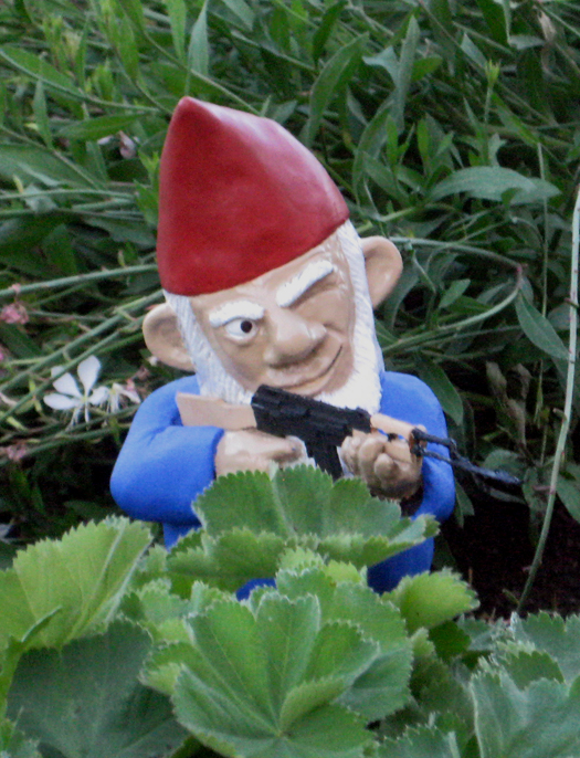 Garden Gnome Posed