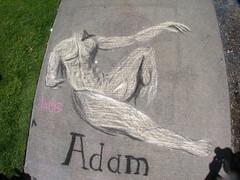 Joel's Adam