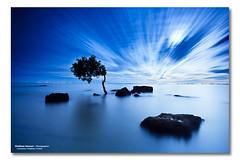 Blue Evening (Matthew Stewart | Photographer) Tags: ocean light sea moon white reflection tree water clouds sunrise bay eclipse still rocks matthew mark deception australia brisbane stewart ii qld queensland l 5d tonight lunar 1740 partial