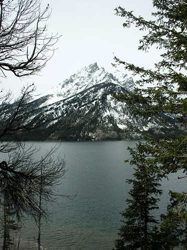 Another view of Jenny Lake