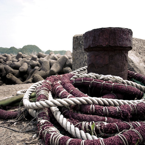 Purple Rope in a Wavebreaker Landscape