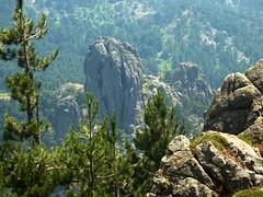 Montée à Punta Furcata : le Castellucciu vu depuis le col herbeux au-dessus de la source de Taculaghja