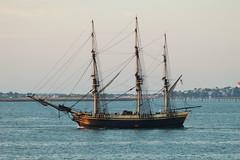 Friendship of Salem (jelpics) Tags: ocean sea boston sailboat harbor boat ship vessel mast tallship bostonma rigging bostonharbor eastindiaman friendshipofsalem