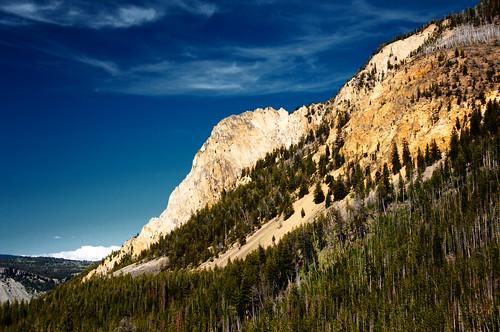 Yellowstone 29