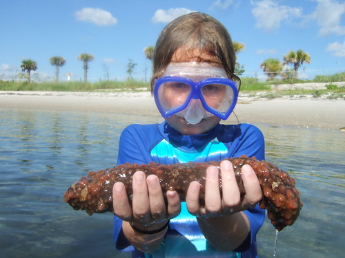 Mandy with a slimy sea cucmber