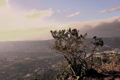 Libertad (Mariano Rupérez) Tags: naturaleza grancanaria libertad cielo nubes atalaya horizonte