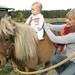 Olivia and Seonaid visit Trincomali Farms