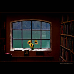 library (stella-mia) Tags: blue light window library explore sunflower fjord frontpage fjrland explored bythefjord throughtthewindow   bestcapturesaoi elitegalleryaoi annakrmcke