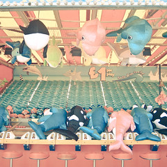 (_cassia_) Tags: pink blue game green yellow toys amusement pier seaside brighton dolphin kitsch prizes stools