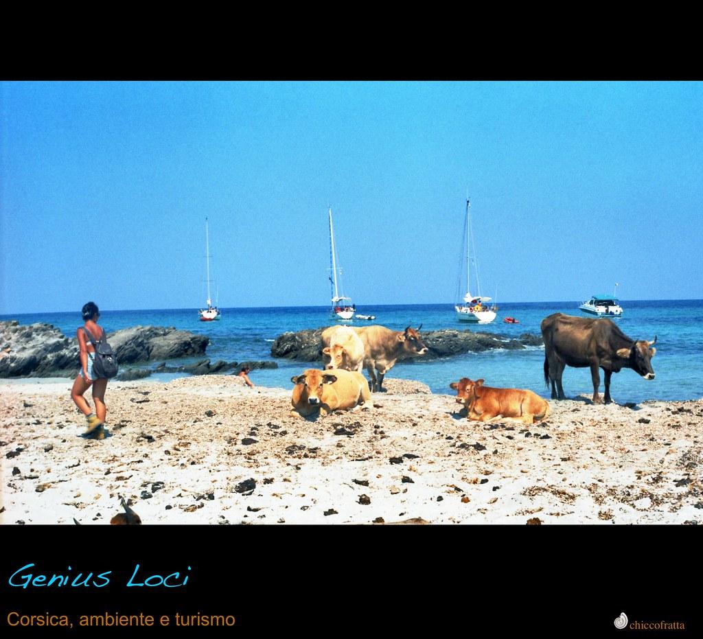 Genius Loci, Corsica, ambiente e turismo