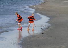 (bogers) Tags: beach netherlands strand seaside sand nederland bogers stranden zand hoekvanholland 20100717