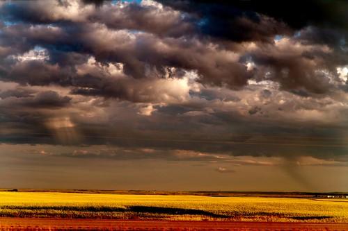 Dark skies, bright prairie