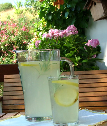 limonate with rosemary - limonata con rosmarino