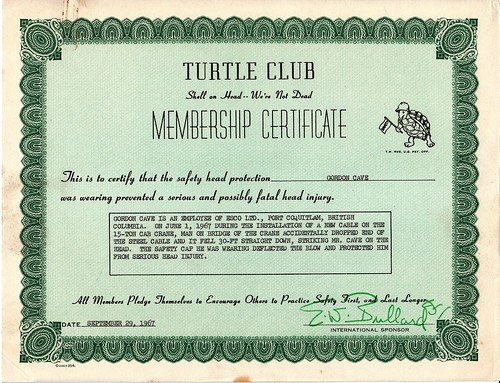 I survived a hard knock on the head, and now I'm in the Turtle Club!