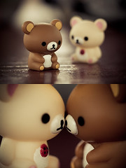 Bears (Kinomi ) Tags: bear cute toy kawaii rilakkuma sanx korilakkuma