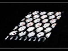 light on the mosaics (magicoda) Tags: venice light italy church window colors nikon italia foto mosaics mosaico finestra draw fotografia dslr venezia colori reflexion luce disegno sanmarco riflesso veneto d300 stmarkschurch magicoda davidemaggi maggidavide