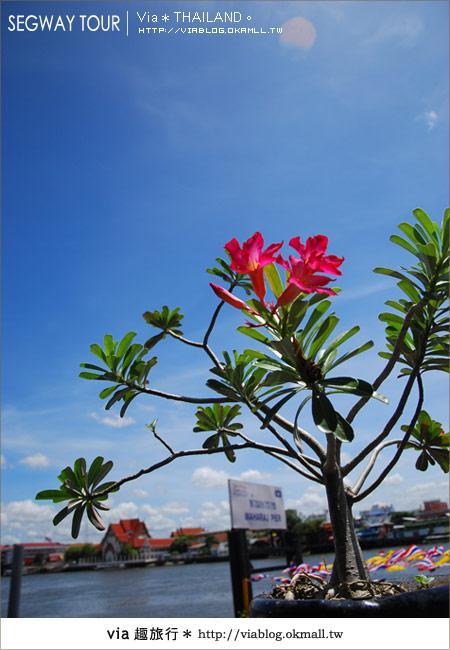 【泰國自由行】曼谷玩什麼?Segway塞格威帶你漫遊~2